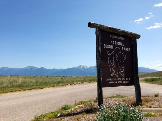 National Bison Range in Montana by Jets Like Taxis