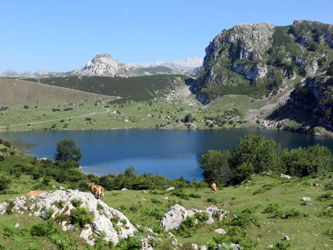 Picos de Europa by Jets Like Taxis
