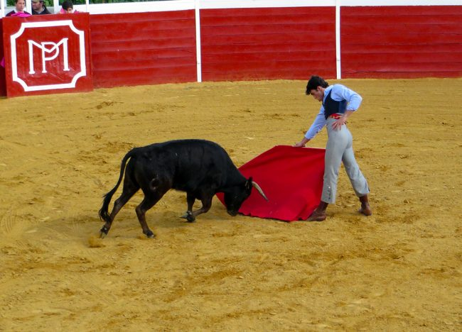 Seville Bullfight by Jets Like Taxis