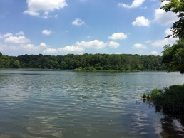 A.W. Marion State Park & Hargus Lake in Circleville, Ohio by Jets Like Taxis